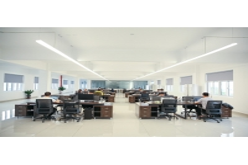 Shanghai Terrui International Trade Co., Ltd.