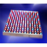 Wholesale LED grow light(KL-GR-225) from china suppliers