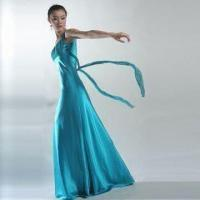 Wholesale Fly-me Away Evening Dress from china suppliers