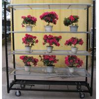 Wholesale Collapsible display flower racking cart with wheels from china suppliers