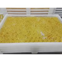 Buy cheap Food Grade Plastic / Metal Tray And Trolly For Drying Capsule Candy from wholesalers
