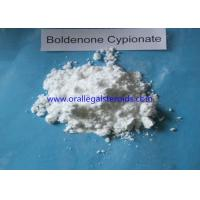 Buy cheap Anabolic Powder Boldenone Steroid Increase Protein Synthesis Bodybuilding from wholesalers