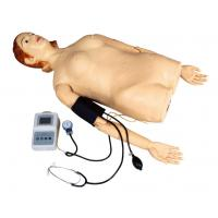 Wholesale Female Half - Body Palpation Simulator with Blood Pressure Measurement for School , Hospital from china suppliers