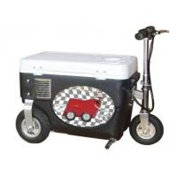 China Electric Motor Plastic Ibc Totes Indoor Transportation For Entertainment on sale