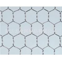 Wholesale Galvanized Chicken Wire Mesh / Hexagonal Wire Mesh from china suppliers