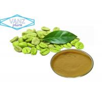 Buy cheap Natural Herbal Extractsgreen coffee bean extract powder 50 % chlorogenic acid from wholesalers