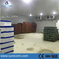 Wholesale PU sandwich panel steel structure cold storage warehouse for onion from china suppliers