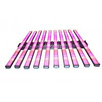 Wholesale High Power Led Grow Lights For Indoor Gardening , Adjustable Led Plant Grow Lights from china suppliers