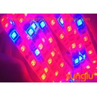 Buy cheap 4 red 1 blue LED Strip Light 300D LED Grow Strip Lights 5050 LED Plant Lighting from wholesalers