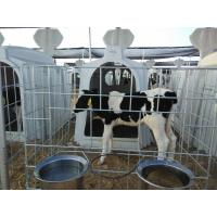 Wholesale Terrui 2.3*1.5m Dairy Calf Hutches For Cattle House from china suppliers