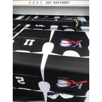 Wholesale Vision Laser for Digital Printing and Sportswear Garment Factory from china suppliers