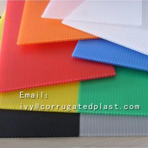 China Christmas Decoration Coloured corflute Sheet plastic sheet/panel/board plastic sheet white board corrugated Plastic on sale