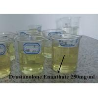 Buy cheap Muscle Building Steroids Drostanolone Enanthate 250mg/Ml Fast Delivery from wholesalers