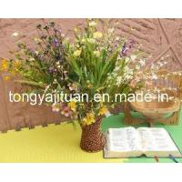 Wholesale Grass Flowers from china suppliers
