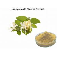 Wholesale Honeysuckle Flower Plant Extract Powder With 5% Chlorogenic Acid Antibacterial Anti - Inflammatory from china suppliers