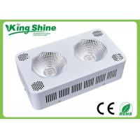 Wholesale Outdoor Spectra Red Blue Led Grow Lights For Plants And Seedlings from china suppliers