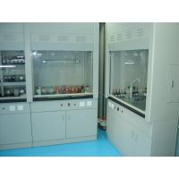 China All steel Fume hood for  hospital and college lab with high quality and best price on sale