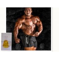 Wholesale Oil Yellow Liquid Injectable Anabolic Steroids Supertest 450 For Muscle Bodybuilding from china suppliers