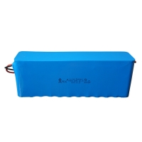 Wholesale 18650 Li Ion 20Ah 24V Rechargeable Batteries UN38.3 from china suppliers