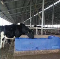 Wholesale Blue LLDPE Thermo Water Trough 115L 30Gal 225cm Length from china suppliers