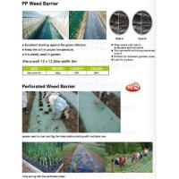 Wholesale Grape house net,garden ground mat,pvc film,non-woven sheet,plant jacket,nurseru house,weed control,weed barrier,mulch fi from china suppliers