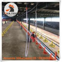 Wholesale Poultry Farm Hot Galvanized Chicken Broiler Floor Raising System with Drinker Line & Feeding Pan System in Chicken Shed from china suppliers