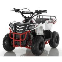 Wholesale 110cc Bore Stroke 52.4mm×49.5mm ATV Quad Bike from china suppliers