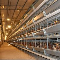Wholesale Hot and Electricidad Galvanized Chicken Cage H Type Layer Broiler Pullet  Battery Cage from china suppliers