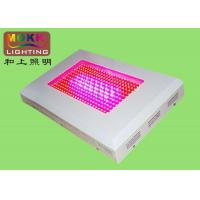 Wholesale Red, Blue PC Sheet AC85 - 265V Waterproof LED Panel Grow Lights For Plant's Growing from china suppliers
