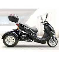 Wholesale Riverbed Forest Road 4 Stroke Gas 50cc Trike Scooter from china suppliers