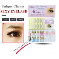 Buy cheap Permanent Eyelash Curl Kit And Eyelashes Perm Kit Stay Curl More Than 3 Months from wholesalers