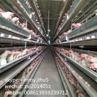 Wholesale Hot sale automatic poultry farmimg equipments H type  galvanized chicken layer battery cage in india from china suppliers