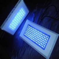 Wholesale 2012 big discount! Cheap14W AC85 - 264V led grow light panels, red / blue from china suppliers