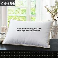 Wholesale Wholesale White 80% Duck Feather and 20% Duck Down Decorative Throw Pillow Feather Cushion Insert from china suppliers