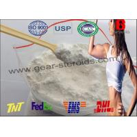 Wholesale High Purity Wholesale Steroid Hormone Testosterones Base CAS 58-22-0 for Bodybuilding from china suppliers