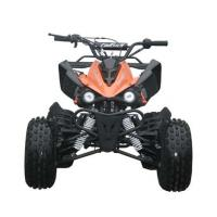Wholesale Engine 125cc Fully Auto Youth Racing ATV With Reverse Max Load 65kg Electric Start from china suppliers