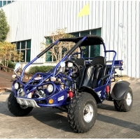 Wholesale 6500rpm 300cc Riverbed EFI Fuel Injected Go Kart Buggy from china suppliers