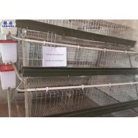 Wholesale Galvanized Chicken Breeding Cages Easy Installation 20 Years Life Duration from china suppliers