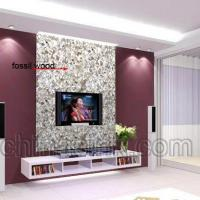 Wholesale fossil petrified wood crazy paver mosaic tv wall project 5 from china suppliers