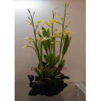 Wholesale CLAY FLOWERS ORCHID (Oncidium) from china suppliers