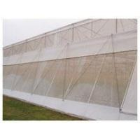 Wholesale Anti Insect Netting from china suppliers