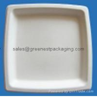 Buy cheap Biodegradable Compostable Disposable Plant Fibre Square Plates from wholesalers