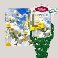 Wholesale Plant Labels plant hang tag plastic flower label for gardening from china suppliers