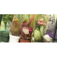 Wholesale PE plastic fresh flowerpot packaging netting from china suppliers