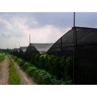 Wholesale insect proof net for greenhouse from china suppliers