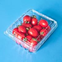 Wholesale Fruit packaging GLT-250C1 from china suppliers