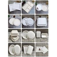 Disposable Sugarcane Bagasse Bamboo Fiber Pulp Moulding Box Clamshell Tableware plate