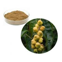Wholesale Croton Extract from china suppliers